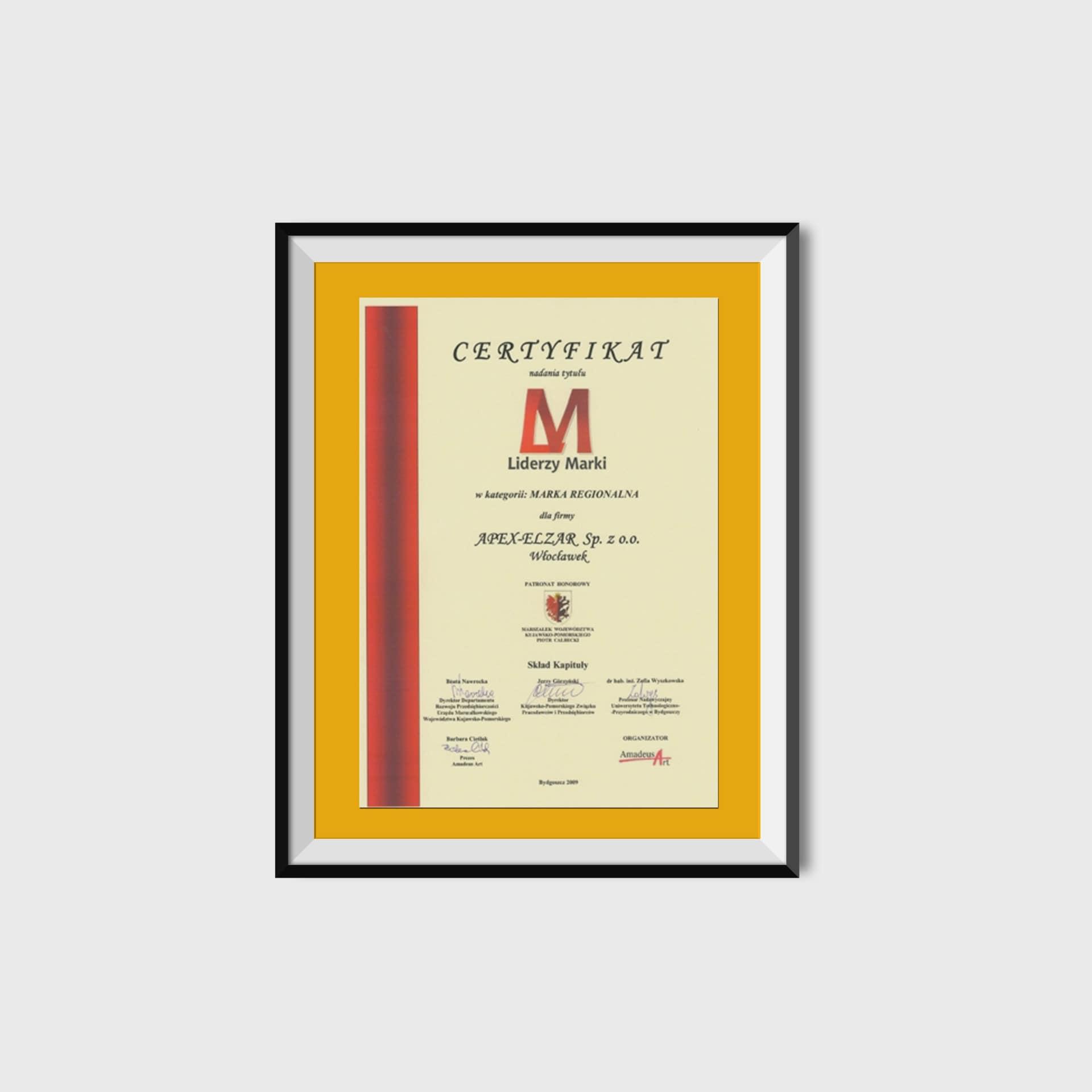 Certyfikat Liderzy Marki w kategorii Marka Regionalna<br/>2009